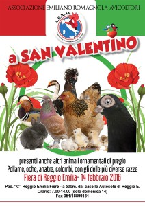 6_san-valentino-razze-av-ii