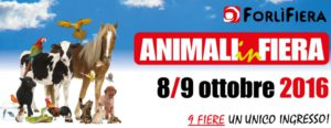 animali-in-fiera-forli-1024x397
